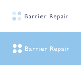 barrier repair